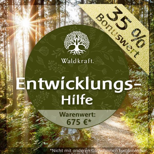 Waldkraft Entwicklungshilfe 675 EUR