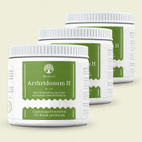 Arthridonum H - Zur natürlichen Unterstützung der Gelenkfunktion 900g