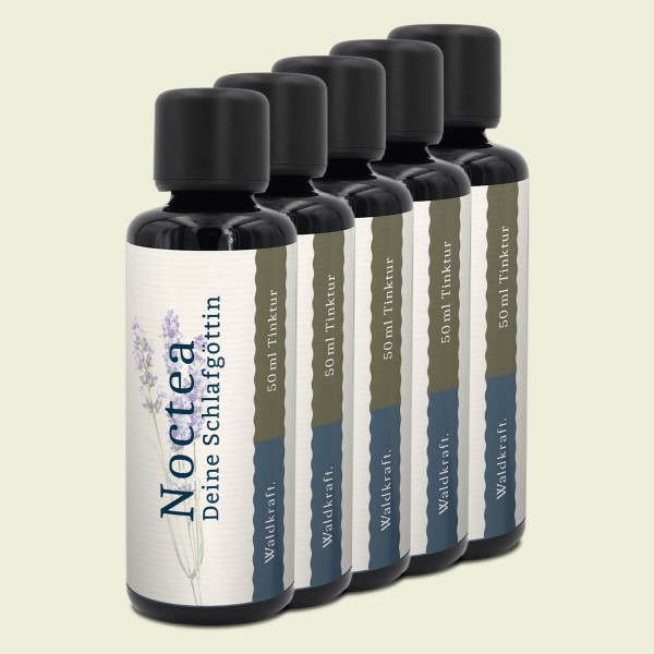 Waldkraft | Noctea – Deine Schlafgöttin – 5er Pack