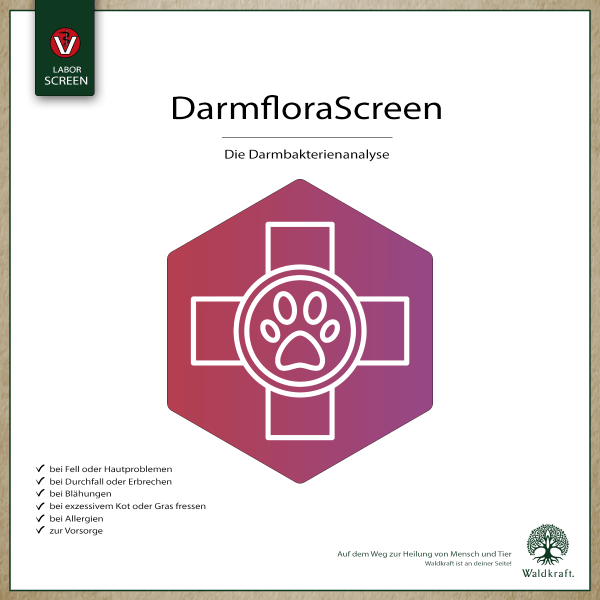 Darmflora-Screen