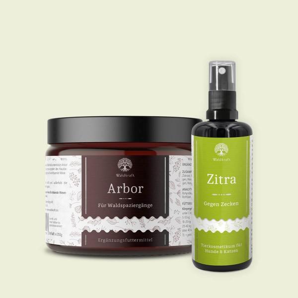 Wald-Paket: Arbor & Zitra (Produktbild)