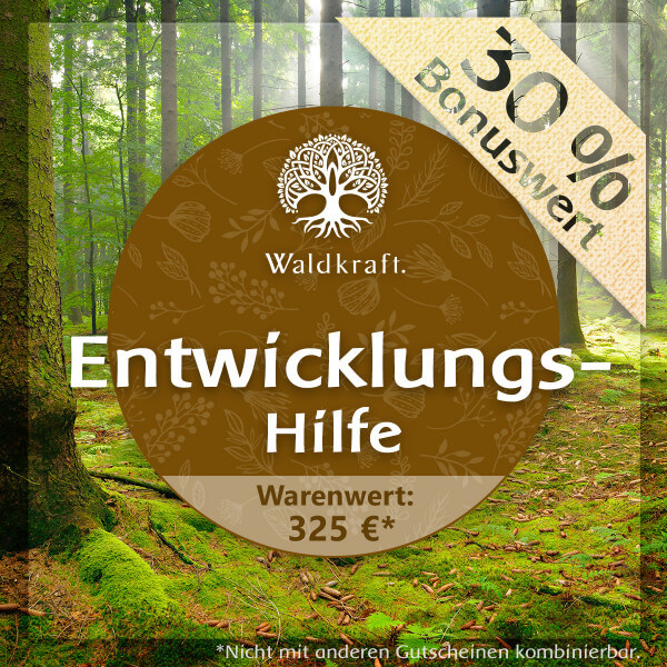 Waldkraft Entwicklungshilfe 325 EUR
