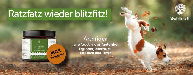 Arthridea von Waldkraft