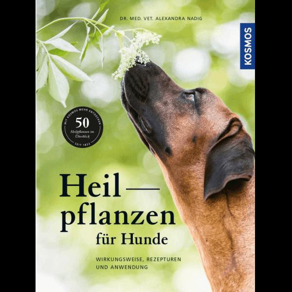 Buch: Heilpflanzen für Hunde